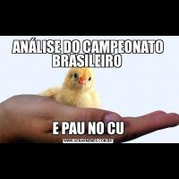 ANÁLISE DO CAMPEONATO BRASILEIRO E PAU NO CU