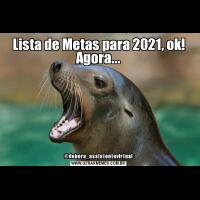 Lista de Metas para 2021, ok! Agora...@debora_assistentevirtual
