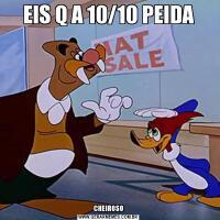 EIS Q A 10/10 PEIDACHEIROSO