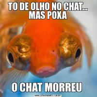 TO DE OLHO NO CHAT... MAS POXAO CHAT MORREU