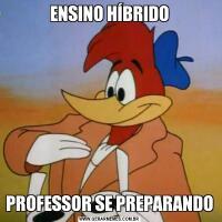 ENSINO HÍBRIDOPROFESSOR SE PREPARANDO