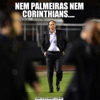 NEM PALMEIRAS NEM CORINTHIANS....