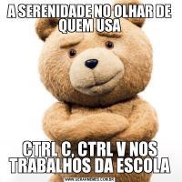 A SERENIDADE NO OLHAR DE QUEM USACTRL C, CTRL V NOS TRABALHOS DA ESCOLA