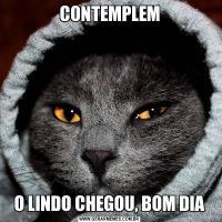 CONTEMPLEMO LINDO CHEGOU, BOM DIA
