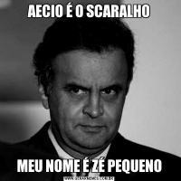 AECIO É O SCARALHOMEU NOME É ZÉ PEQUENO