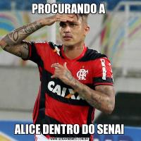 PROCURANDO A ALICE DENTRO DO SENAI