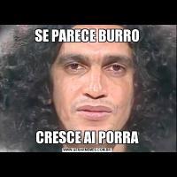 SE PARECE BURROCRESCE AI PORRA