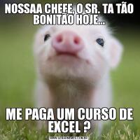 NOSSAA CHEFE, O SR. TA TÃO BONITÃO HOJE...ME PAGA UM CURSO DE EXCEL ?