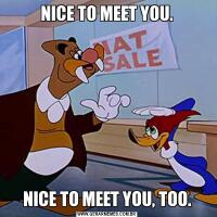 NICE TO MEET YOU.NICE TO MEET YOU, TOO.