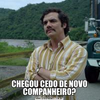 CHEGOU CEDO DE NOVO COMPANHEIRO?