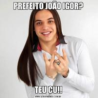 PREFEITO JOÃO IGOR?TEU CU!!