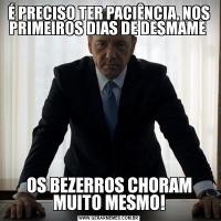 É PRECISO TER PACIÊNCIA, NOS PRIMEIROS DIAS DE DESMAME OS BEZERROS CHORAM MUITO MESMO!