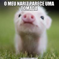 O MEU NARIZ PARECE UMA TOMADA