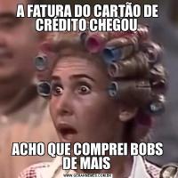 A FATURA DO CARTÃO DE CRÉDITO CHEGOU ACHO QUE COMPREI BOBS DE MAIS