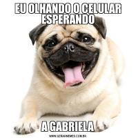EU OLHANDO O CELULAR ESPERANDOA GABRIELA