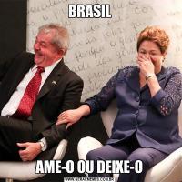 BRASILAME-O OU DEIXE-O