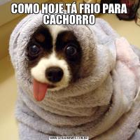 COMO HOJE TÁ FRIO PARA CACHORRO