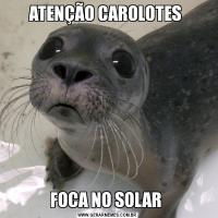 ATENÇÃO CAROLOTES FOCA NO SOLAR
