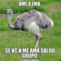AME A EMA SE VC N ME AMA SAI DO GRUPO