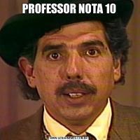 PROFESSOR NOTA 10