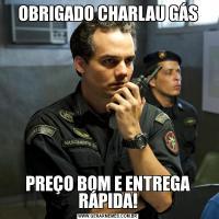 OBRIGADO CHARLAU GÁSPREÇO BOM E ENTREGA RÁPIDA!