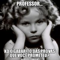 PROFESSOR...KD O GABARITO DAS PROVAS QUE VOCÊ PROMETEU?