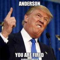 ANDERSONYOU ARE FIRED