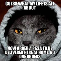 GUESS WHAT MY LIFE IS ALL ABOUTNOW ORDER A PIZZA TO BE DELIVERED HERE AT HOME, NO ONE ORDERS