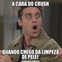 A CARA DO CRUSHQUANDO CHEGO DA LIMPEZA DE PELE!