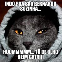 INDO PRA SÃO BERNARDO SOZINHA...HUUMMMMM... TÔ DE OLHO HEIM GATA!!!