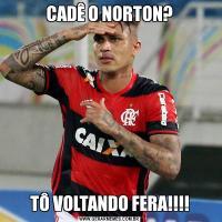 CADÊ O NORTON?TÔ VOLTANDO FERA!!!!