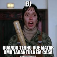 EUQUANDO TENHO QUE MATAR UMA TARÂNTULA EM CASA