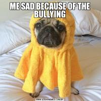 ME SAD BECAUSE OF THE BULLYING