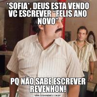 """*SOFIA*, DEUS ESTA VENDO VC ESCREVER """"FELIS ANO NOVO""""PQ NÃO SABE ESCREVER REVENHON!"""
