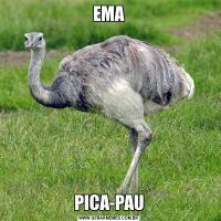 EMAPICA-PAU