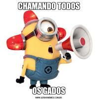 CHAMANDO TODOSOS GADOS