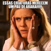 ESSAS CRIATURAS MERECEM UM PAU DE ARARA!!!!!