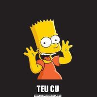 TEU CU