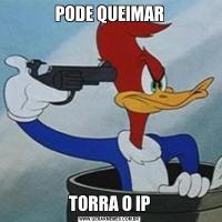 PODE QUEIMARTORRA O IP