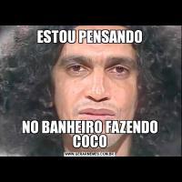 ESTOU PENSANDONO BANHEIRO FAZENDO COCO