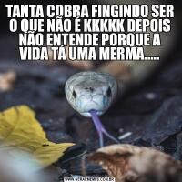 TANTA COBRA FINGINDO SER O QUE NÃO É KKKKK DEPOIS NÃO ENTENDE PORQUE A VIDA TÁ UMA MERMA.....
