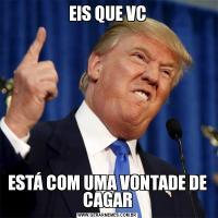 EIS QUE VCESTÁ COM UMA VONTADE DE CAGAR