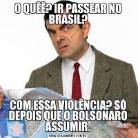 O QUÊÊ? IR PASSEAR NO BRASIL?COM ESSA VIOLÊNCIA? SÓ DEPOIS QUE O BOLSONARO ASSUMIR.