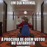 UM DIA NORMALÁ PROCURA DE QUEM VOTOU NO GAFANHOTO
