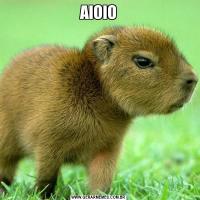 AIOIO