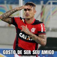 GOSTO  DE  SER  SEU  AMIGO