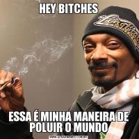 HEY BITCHESESSA É MINHA MANEIRA DE POLUIR O MUNDO