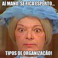 AÍ MANO, SE FICA ESPERTO...TIPOS DE ORGANIZAÇÃO!
