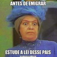 ANTES DE EMIGRARESTUDE A LEI DESSE PAIS