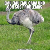 EMU EMU EMU CADA UNO CON SUS PROBLEMAS